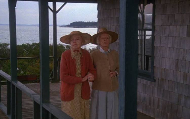 Lillian Gish and Bette Davis (The Whales of August)